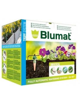 KIT BLUMAT 12 PLANTES...