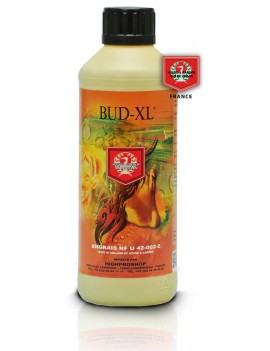 HOUSE & GARDEN BUD XL - 500 ML