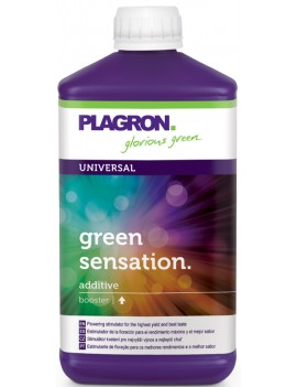 PLAGRON GREEN SENSATION - 1...