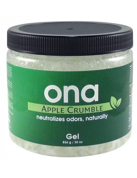 ONA GEL APPLE CRUMBLE 1L -...