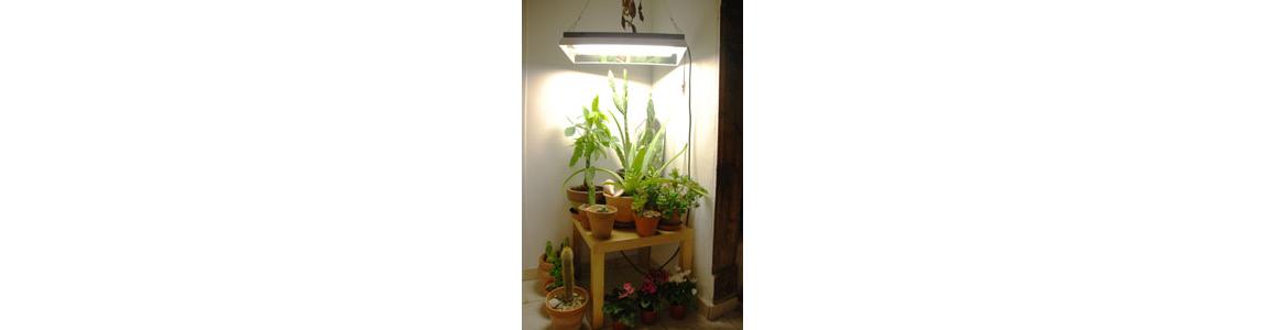 Eclairage horticole - Bota n'co